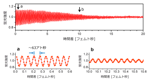 放射光によるフェムト秒超高速緩和過程の時間追跡